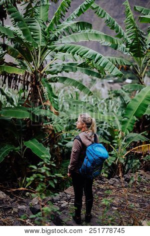 Santo antao island. Cape verde. Blond young women with blue backpack walking through banana plantation on the trekking trail route to Paul valley. stock photo