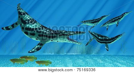 A pod of Dolichorhynchops try to escape from a huge Kronosaurus marine reptile as Asian Arowana fish swim the other way. stock photo