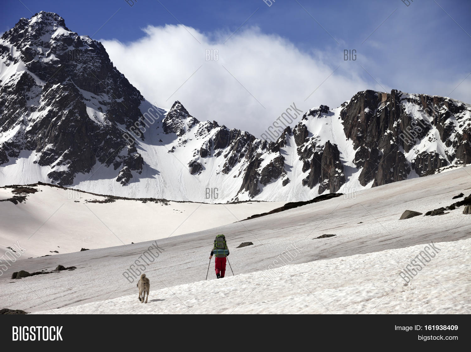 Hiker with dog at spring snow mountains. Turkey Kachkar Mountains highest part of Pontic Mountains.