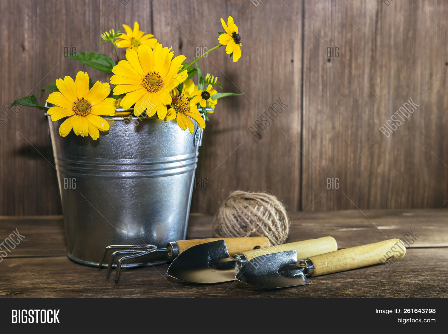 🔥 Gardening  Planting And Replanting Plants  A Bouquet Of