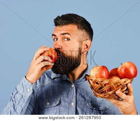 Guy eats harvest. Farmer with calm face kisses red apple stock photo