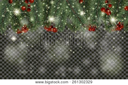 Detailed Christmas Tree Branches And Christmas Berry On Transparent Background. Christmas Decoration