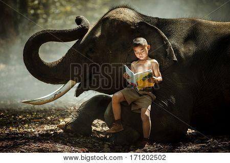 Asian elephants in the wild tales I read his children's book reading relationship