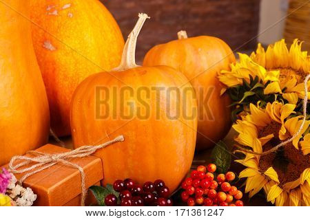 Autumn pumpkins with flowers on wooden board. Haloween stock photo