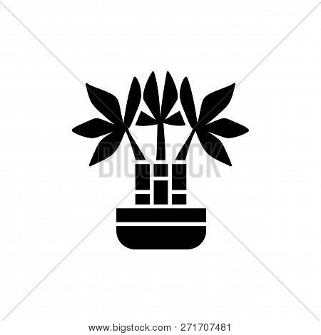 Black & white vector illustration of bamboo with leaves in pot. Decorative dracaena plant in container. Flat icon of indoor green foliage plant. Isolated object on white background stock photo