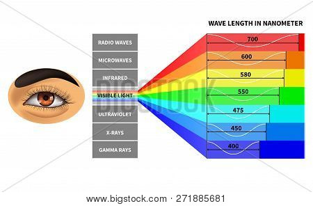Visible light spectrum. Color waves length perceived by human eye. Rainbow electromagnetic waves. Educational school physics diagram. Scheme nanometer, rays electromagnetic spectrum illustration stock photo