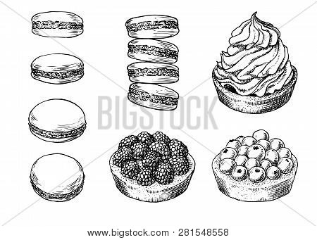 Set of delicious hand drawn creamy biscuit, french macaroons and tarts with berries. Engraving style pen pencil painting retro vintage vector lineart illustration on white background. Collection of sweet desserts. stock photo