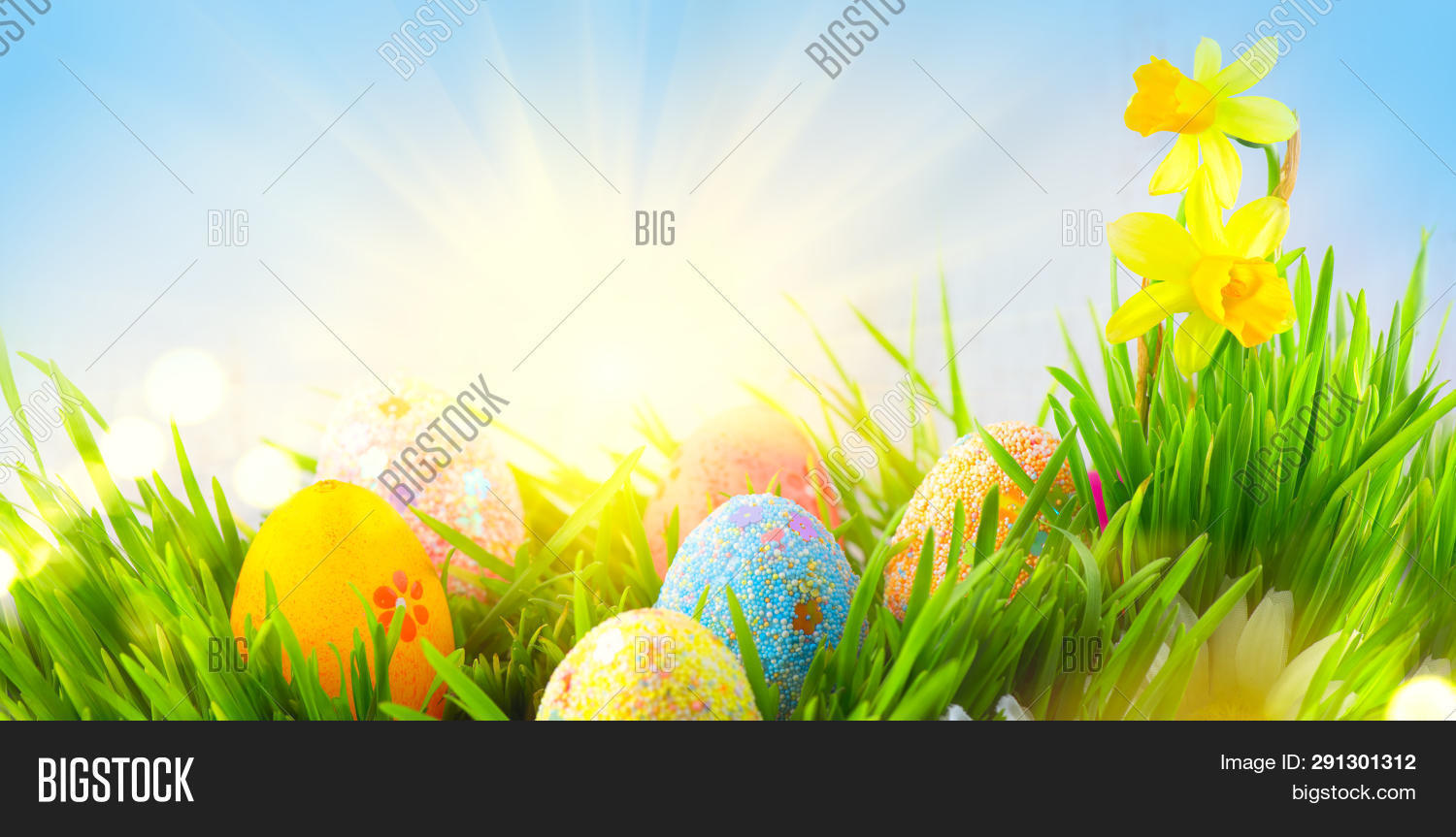 Easter Eggs background. Beautiful colorful eggs in spring grass meadow over blue sky with sun border