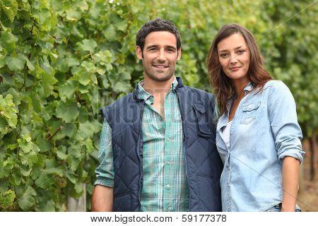 Couple standing amidst vines stock photo