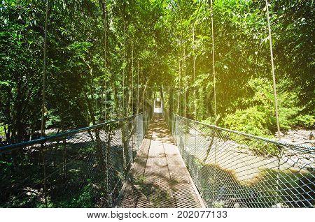 Suspension bridge in the jungle of Borneo in Tabin lahad datu Sabah Borneo Malaysia. Tabin Wildlife Reserve is a nature preserve in Sabah Malaysia. stock photo