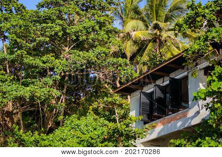 Windows with shutters on bungalow resort in jungle forest. stock photo