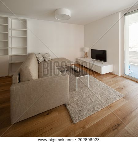 Comfortable living room weel-finished in the small details with a leisure sofa stock photo