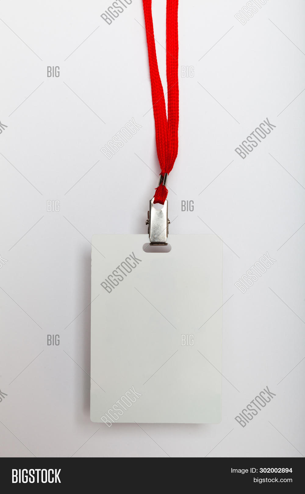 Lanyard Id Tag, Badge Card Blank. Conference Event, Plastic Authority.
