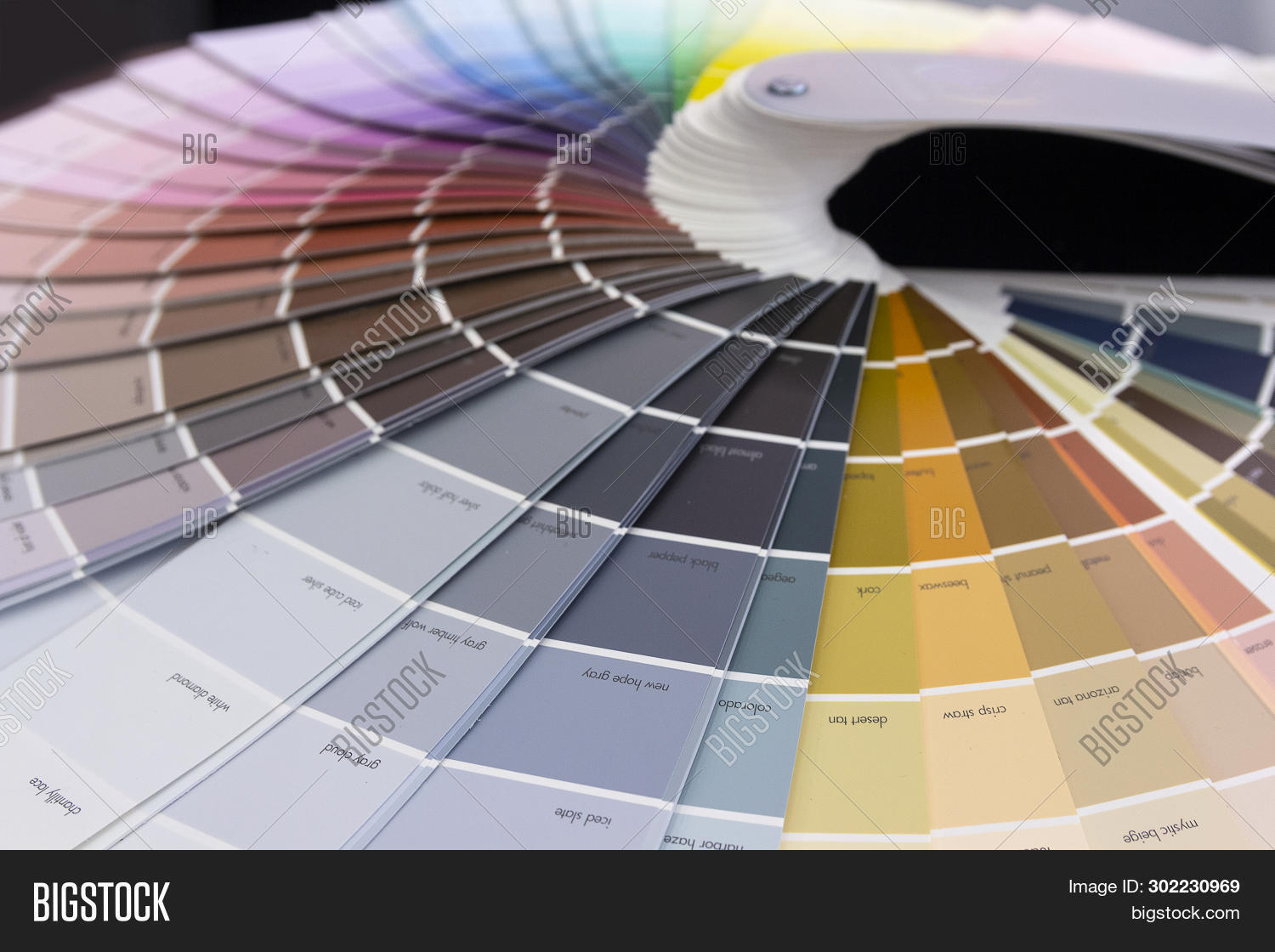 accuracy,background,card,catalog,chart,checking,choice,choosing,circle,closeup,coated,collection,color,colorful,coloring,colour,colourful,decide,decoration,design,different,example,gamma,graphic,guidance,guide,matching,multicolor,multicolored,paint,palette,pattern,picking,pointer,prepress,press,print,printer,printout,profile,rainbow,renovation,round,sample,sampler,selection,semicircle,spectrum,swatch,variation