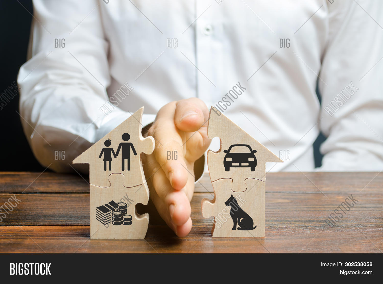 A Man Shares A House With His Palm With Images Of Property, Children And Pets. Divorce Concept, Prop