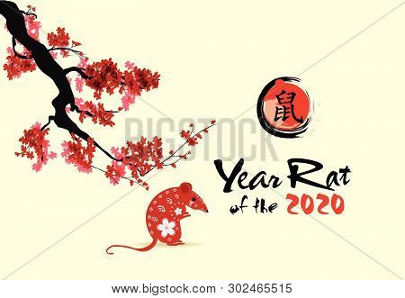 Happy Chinese New Year 2020 year of the rat,Chinese characters mean Happy New Year, wealthy. lunar new year 2020. stock photo