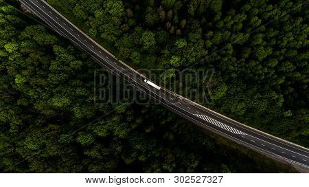 The road artery leads through the forest stock photo