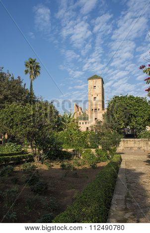 Andalusian gardens in Udayas kasbah.