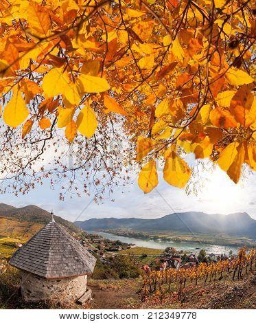 Landscape of Wachau valley Spitz village with Danube river in Austria. stock photo