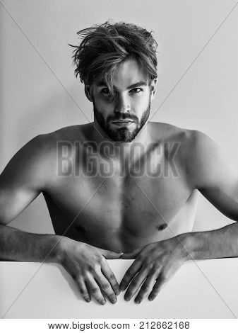 Handsome guy fashion sexy young bearded macho man model with bare muscular chest on green background stock photo