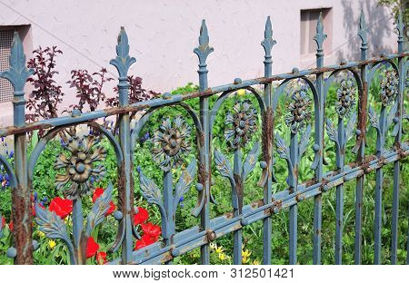 wrought iron fence with floral ornaments with flaking blue painting stock photo