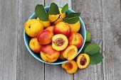 Fresh peaches in blue dish
