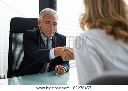 Two businesspeople male and female shaking hands during a meeting in the office stock photo