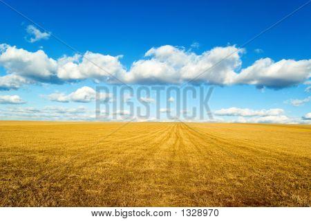 the autumn landscape on background beautiful blue sky. stock photo