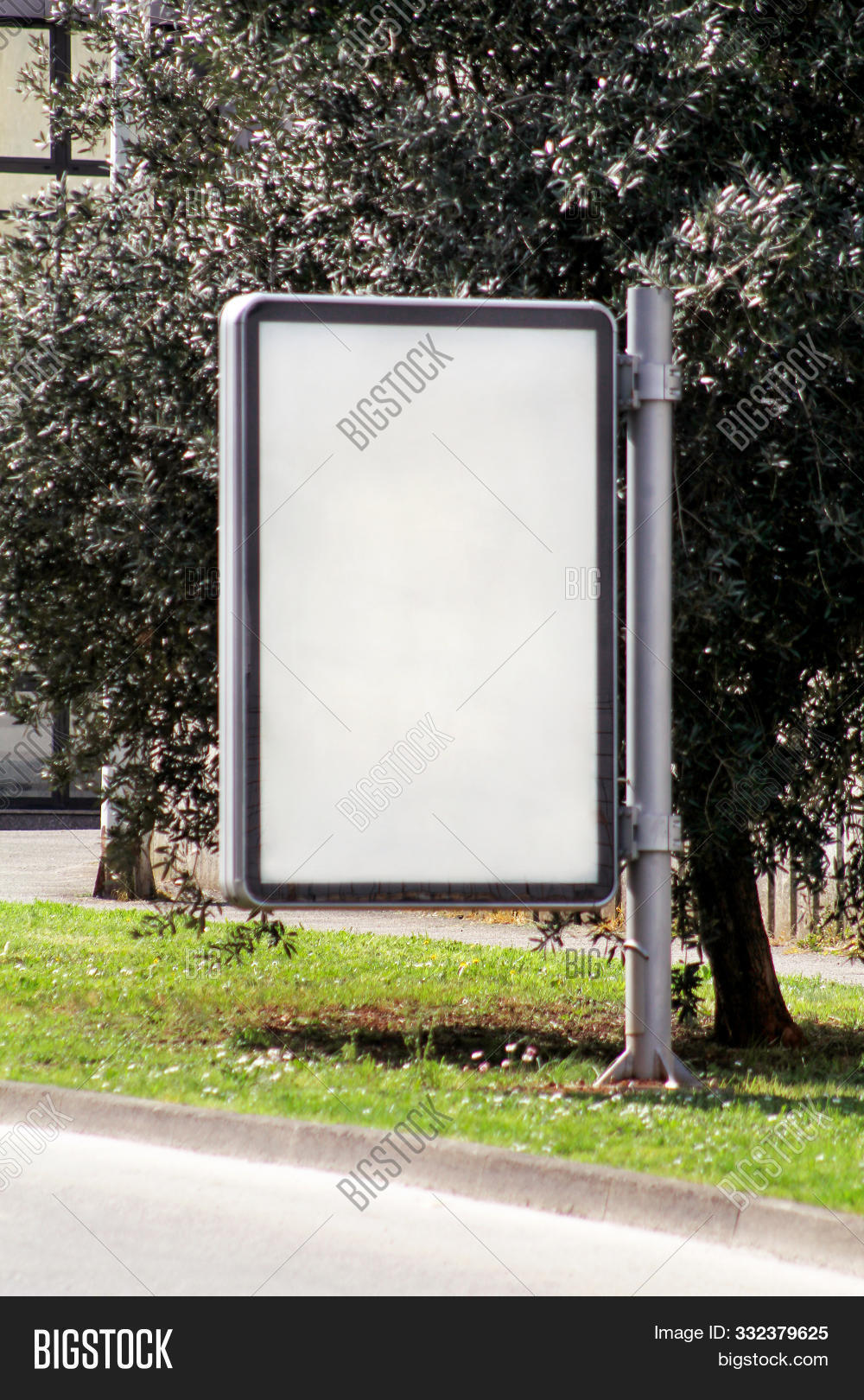 Billboard In The Street City, Green Plants, Selective Focus And Closeup. Blank Advertising Billboard