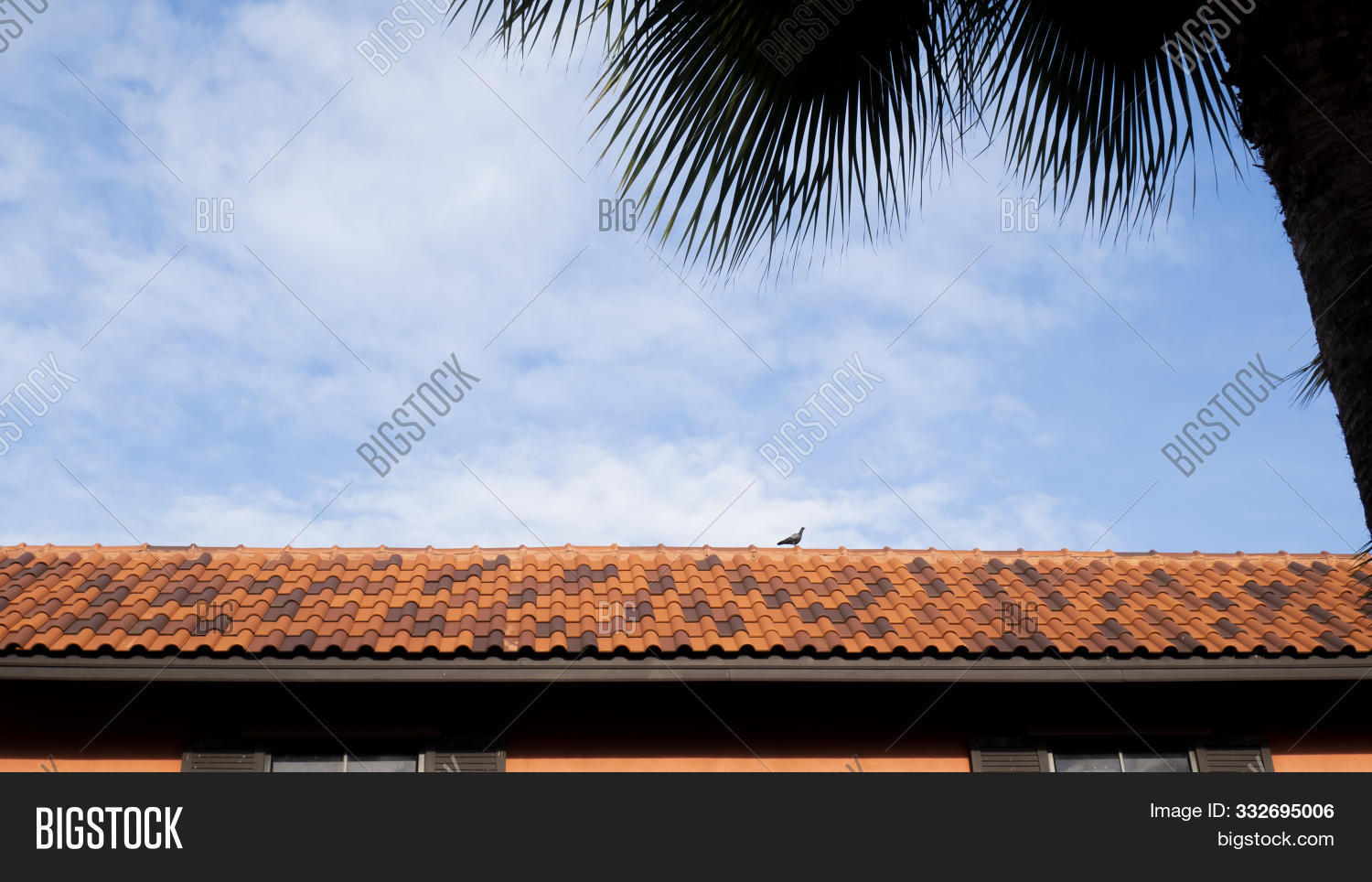 ancient,architecture,background,bird,blue,building,ceramic,clay,construction,dalmatia,design,detail,dubrovnik,europe,exterior,famous,historic,history,holiday,home,house,landmark,landscape,material,medieval,mediterranean,old,pattern,protection,red,residential,roof,roofing,rooftop,sky,skyline,stone,structure,style,summer,texture,tile,top,tourism,travel,urban,vacation,wall