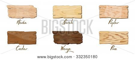 Empty dark and light brown wooden banners, sign boards for text, lettering with texture of hevea, birch, poplar, cedar, wenge, pine. Copy space. Vector set with samples for furniture industry. stock photo