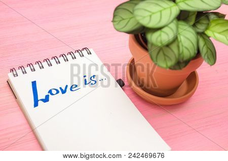 Love is inscription in notepad page and green arrowroot plant on purple wooden board background. stock photo