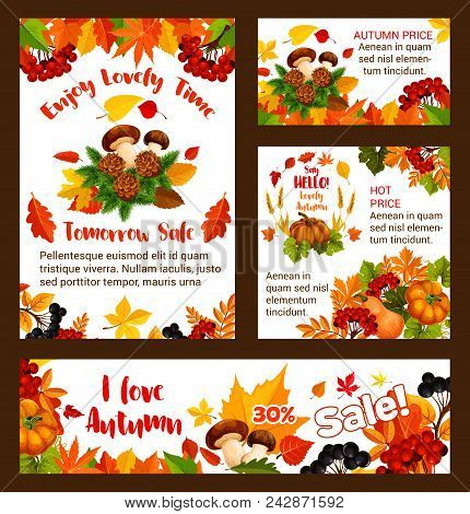 Autumn sale posters and web banners templates for seasonal online shopping or 30 percent discount promo store leaflet. Vector bestseller design of pumpkin, autumn maple leaf fall and oak acorn stock photo