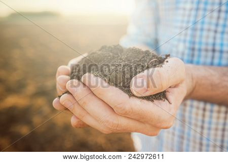 Handful of soil, close up of farmer's hands holding pile of arable soil, selective focus stock photo