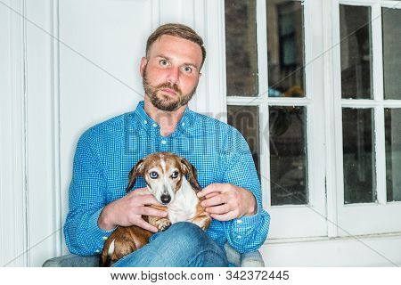 Young American Man with beard, wearing blue patterned shirt, sitting at home by window in New York City, holding Dachshund dog on lap, relaxing. Portrait of young man with best friend - dog. stock photo