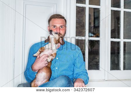 Young American Man with beard, wearing blue patterned shirt, sitting on chair at home by window in New York City, crossing legs, holding Dachshund dog, relaxing. Portrait of man with best friend - dog stock photo