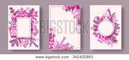 Tropical herb twigs, tree branches, flowers floral invitation cards templates. Plants borders creative invitation cards with dandelion flowers, fern, lichen, olive branches, sage twigs. stock photo