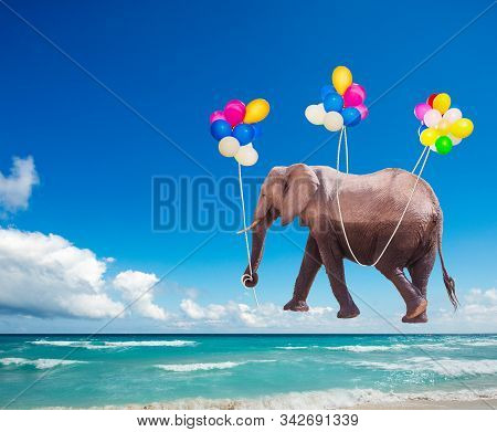 African elephant fly on the color air balloons stock photo