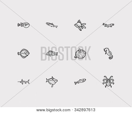 Fauna icons set. Salmon and fauna icons with fugu fish, herring and sea horse. Set of fighting for web app logo UI design. stock photo