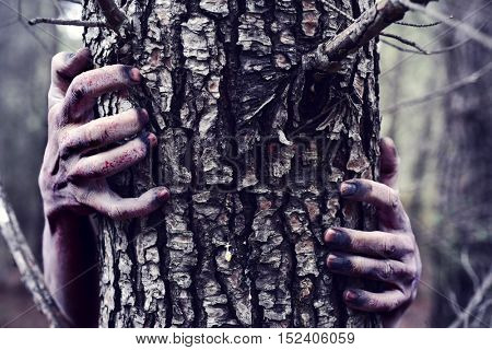 closeup of the bloody and scary hands of a zombie or monster who is hiding behind a tree in the fore