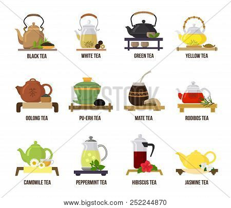 Tea vector green or black-tea in teapot illustration drinking set of jasmine and rooibos fruity drinks on teatime in cafe isolated on white background stock photo