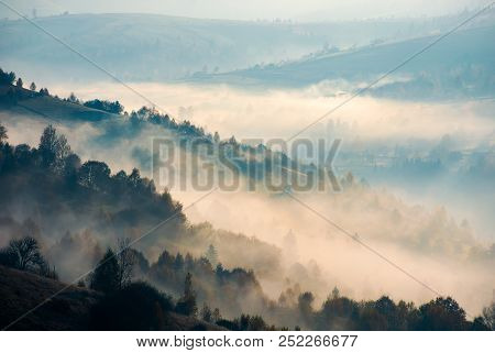 trees on hill side in morning fog. beautiful autumn background of mountainous area stock photo