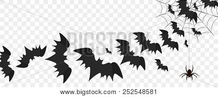 Halloween Bats Flying Over Transparent Background, Spider Hanging On Web, Vector Illustration. Hallo
