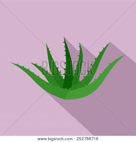 Aloe vera icon. Flat illustration of aloe vera icon for web design stock photo