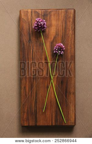 Wild onion violet on a wooden background of black walnut. Beautiful summer wildflowers. vertical, vertical design. stock photo
