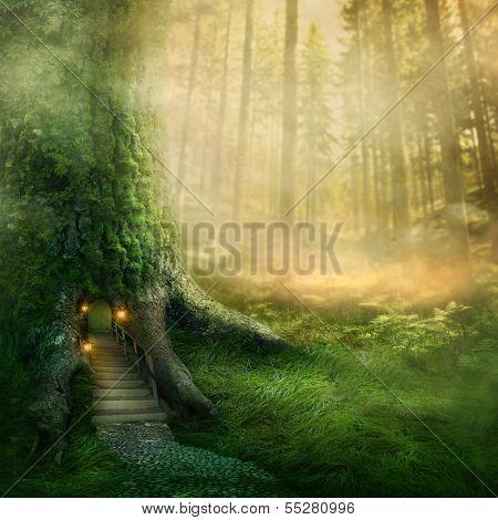 Fantasy tree house in backwoods