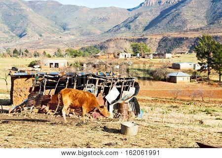 blur in lesotho malealea street village near mountain and sky stock photo
