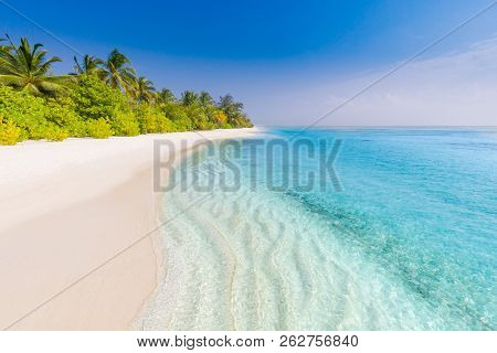 Maldives paradise beach. Perfect tropical island. Beautiful palm trees and tropical beach. Moody blue sky and blue lagoon. Luxury travel summer holiday background concept. stock photo