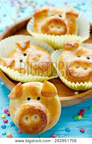 Pig bread buns, funny baking idea shaped cute piggy faces, symbolic food for new year 2019 stock photo
