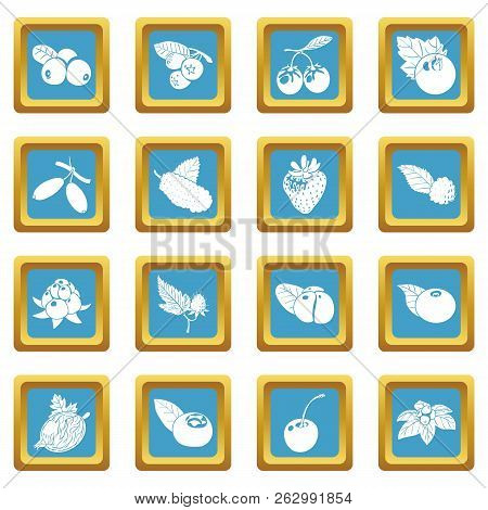Berries icons set sapphirine square isolated on white background stock photo